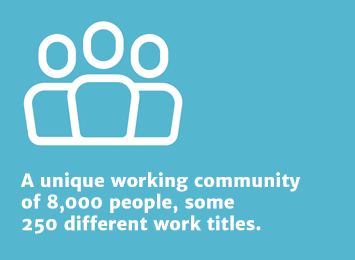 Info 1: A unique working community of 8000 people, some 250 different work titles.